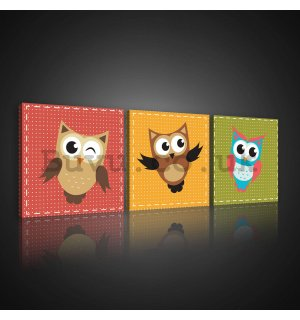 Painting on canvas: Baby owls - set 3pcs 25x25cm