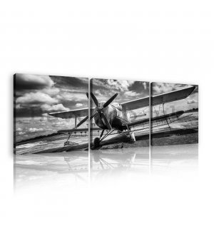 Painting on canvas: Biplane (black and white) - set 3pcs 25x25cm