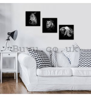 Painting on canvas: Black and white animals (1) - set 3pcs 25x25cm