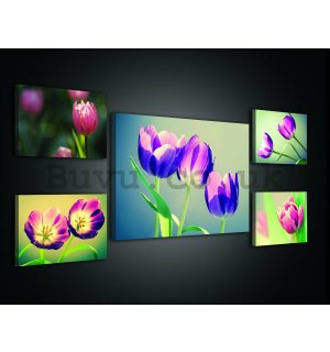 Painting on canvas: Tulips (2)  - set 1pc 70x50 cm and 4pc 32,4x22,8 cm