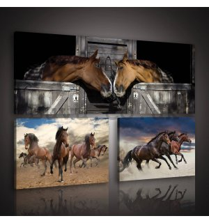 Painting on canvas: Horses (1) - set 1pc 80x30 cm and 2pc 37,5x24,8 cm