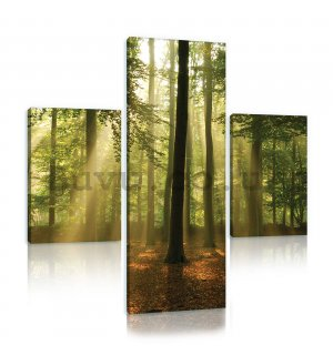 Painting on canvas: Sun in the Forest (4) - set 1pc 80x30 cm and 2pc 37,5x24,8 cm