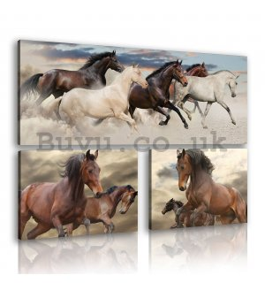 Painting on canvas: Horses (2) - set 1pc 80x30 cm and 2pc 37,5x24,8 cm