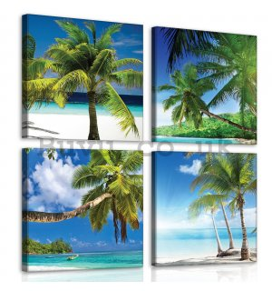 Painting on canvas: Palms at the beach - set 4pcs 25x25cm