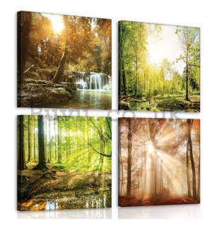 Painting on canvas: Forest views (1) - set 4pcs 25x25cm