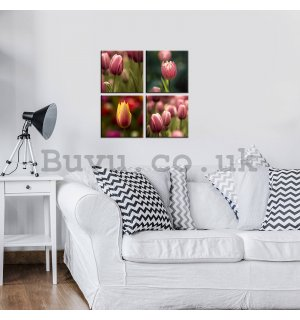 Painting on canvas: Tulips (1) - set 4pcs 25x25cm