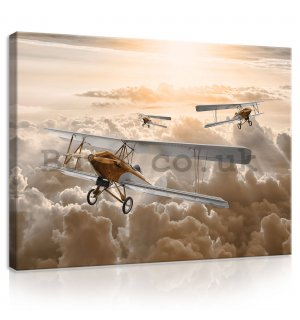 Painting on canvas: Biplanes - 80x60 cm