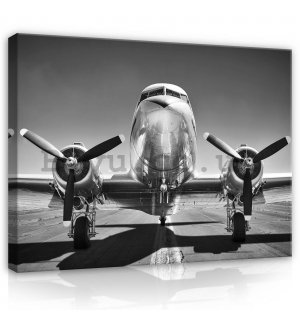 Painting on canvas: Aircraft Black & White (1) - 80x60 cm