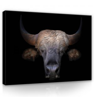 Painting on canvas: Bull (1) - 80x60 cm
