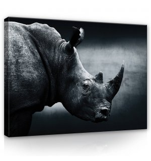 Painting on canvas: Rhino (black and white) - 80x60 cm
