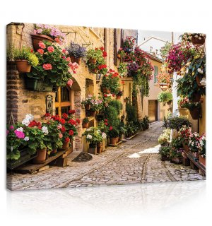 Painting on canvas: Street with flowers - 80x60 cm