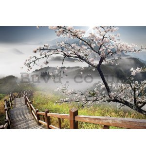 Wall mural vlies: Cherry tree above the stairs - 416x254 cm