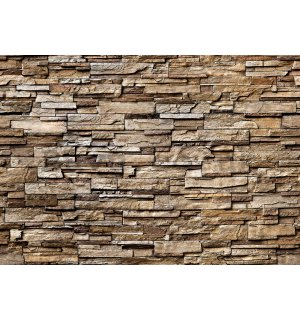 Wall mural vlies: Stone wall (brown) - 400x280 cm