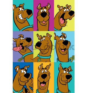 Poster - Scooby Doo (The Many Faces Of Scooby Doo)
