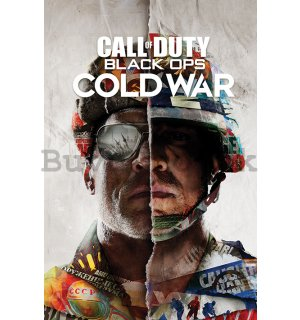Poster - Call Of Duty Cold War (Split)