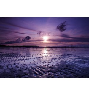 Wall Mural: Violet sunset - 184x254 cm