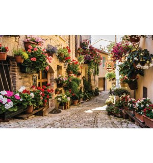 Wall Mural: Street with flowers - 254x368 cm