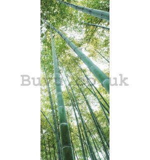 Photo Wallpaper Self-adhesive: Bamboo forest - 211x91 cm