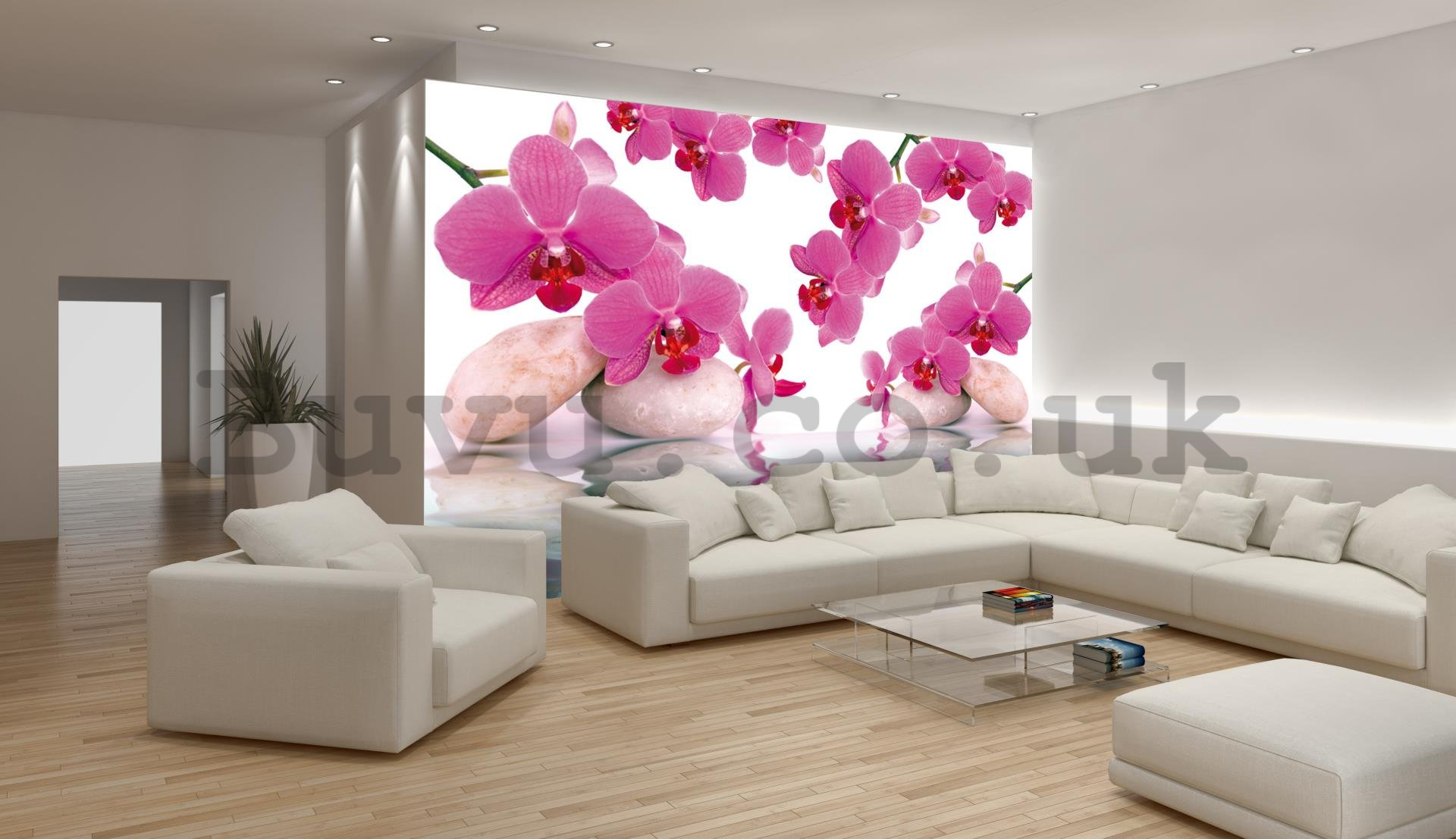 Wall Mural: Orchid and stones - 254x368 cm