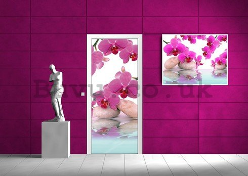 Wall Mural: Orchid and stones - 211x91 cm