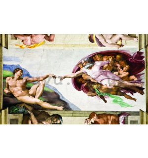 Wall Mural: The creation of Adam (Michelangelo Buonarotti) - 254x368 cm