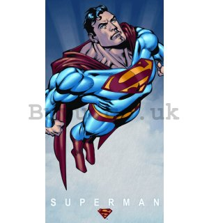 Metal sign: Superman - 40x22 cm