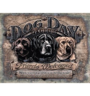 Metal sign - Dog Day