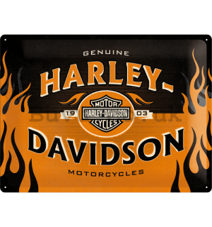 Metal sign - Harley-Davidson (Flames)