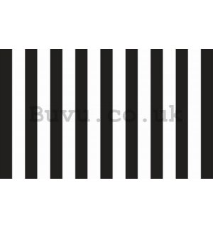 Wall Mural: Black and white stripes - 184x254 cm