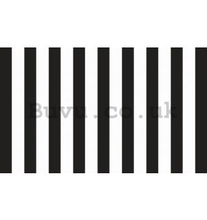 Wall Mural: Black and white stripes - 254x368 cm