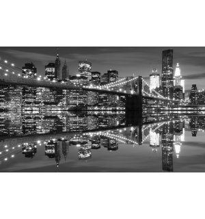 Wall Mural: Brooklyn Bridge Black & White (3) - 254x368 cm