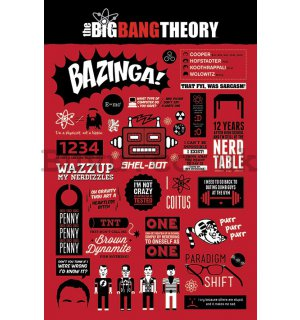 Poster - The Big Bang Theory (Infographics)