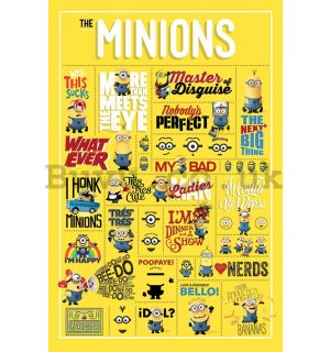 Poster - Despicable Me, Infographics