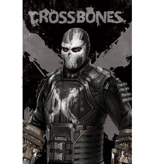 Poster - Captain America Civil War (Crossbones)