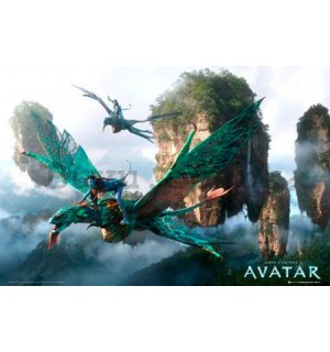 Poster - Avatar flying